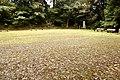 Hanarejima island 2020-09-27 (1) sa.jpg