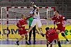 Handball-WM-Qualifikation AUT-BLR 062.jpg