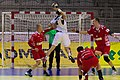 Handball-WM-Qualifikation AUT-BLR 062.jpg