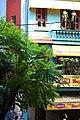 Hanoi (2823990611).jpg