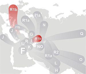 Haplogrup R1b