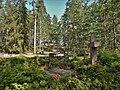 Hautausmaa Mäntysaaressa.jpg