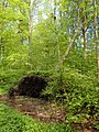 Havreballe Skov (rewilding).jpg