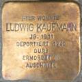 Heidelberg Ludwig Kaufmann.png