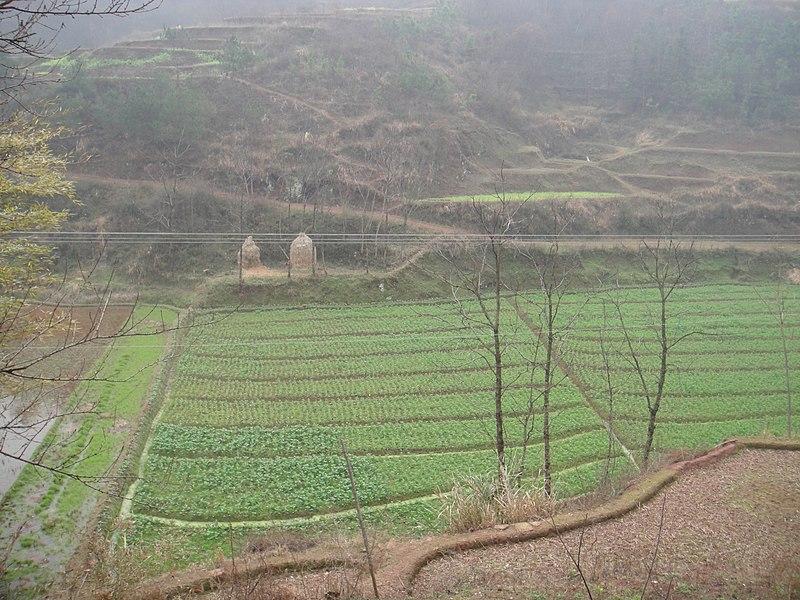 File:Hengnan, Hengyang, Hunan, China - panoramio.jpg