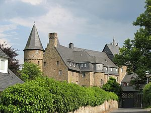 Herborn Academy - Herborn Castle, the first location of the Academy from 1588