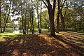 Hoechster Stadtpark 03.jpg
