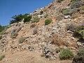Holidays Greece - panoramio (269).jpg