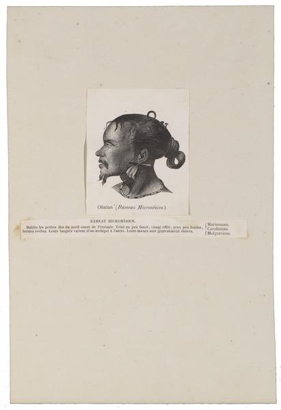 File:Homo sapiens - Micronesië - 1700-1880 - Print - Iconographia Zoologica - Special Collections University of Amsterdam - UBA01 IZ19500005.tif
