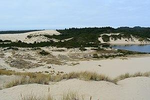 Oregon Dunes National Recreation Area - Image: Honeyman Memorial State Park Cleawox Lake