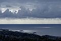 Horizon (3808271644).jpg