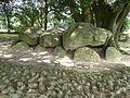 Hunnebedden zijn graven in Drenthe.jpg