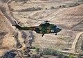 IAR 330 MEDEVAC.jpg