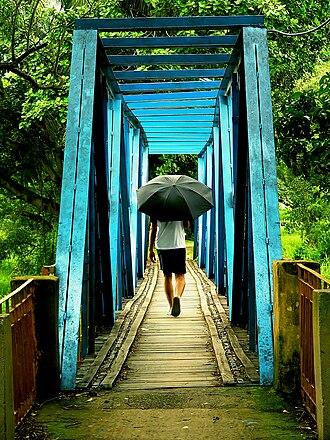 Indian Institute of Management Calcutta - Image: IIM Calcutta Mini Howrah Bridge 1
