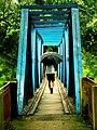 IIM Calcutta Mini Howrah Bridge 1.jpg