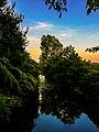 Il bello dell'Olona. Ph Ivan Stesso.jpg