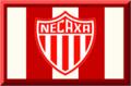 Impulsora del Deportivo Necaxa S.A. de C.V..png