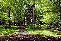 In Max-Aschmann Park - panoramio.jpg
