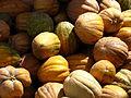 India - Koyambedu Market - Pumpkins 05 (3986300897).jpg