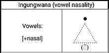 Ingungwana (Vowel Naslity).jpg