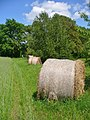 Insel Toeplitz - Ernte (Toeplitz Island - Harvest) - geo.hlipp.de - 36872.jpg