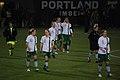 Ireland womens national football team.jpg