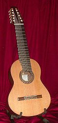 JME ten string guitar.jpg