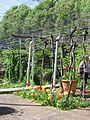 Jardin Treille Villette Mai 2016 032.JPG