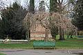 Jardin des plantes, Toulouse 01.JPG