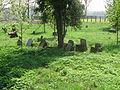 Jewish cemetery in Ivanovice na Hané 2.JPG
