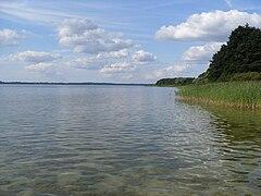 [Obrazek: 240px-Jezioro_Miedwie.jpg]