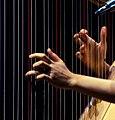 Joanna Newsom live @ Auditorium (5035654436).jpg