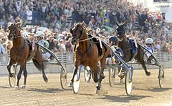 Johnny Takter & Iceland Elitloppet 2010 001.jpg