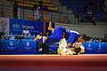 Judo (21778911398).jpg