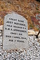 Just Nuisance Tombstone.jpg