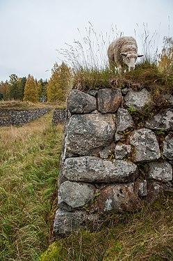 Kärnäkosken linnoitus 2017 01.jpg