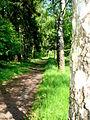 Kamienna Góra, Dolnośląskie Centrum Rehabilitacji, park (Aw58) DSC05315.JPG