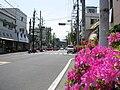 Kanagawa Route 45 -03.jpg