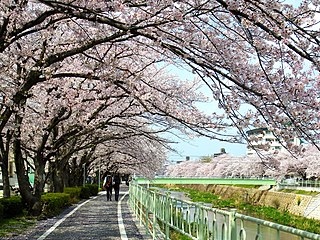 Meitō-ku, Nagoya Ward in Japan