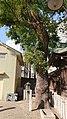 Kanayama Jinja 20190309-01.jpg