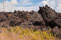 Kapoho lava flow (1).jpg