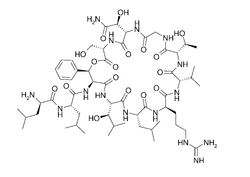Katanosin A structure.png