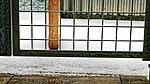 Katzenauslauf auf der Terrasse 05.jpg