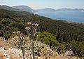 Kefalonia view (8107767672).jpg