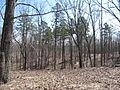 Kings Mountain National Military Park - South Carolina (8558914384) (2).jpg