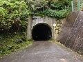 Kominami Tunnel.JPG