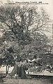 Konakry-Fromager colossal à l'entrée de la ville.jpg