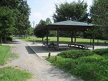 公園 越谷 梅林