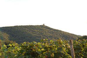Krausberg mit Aussichtsturm vom Neuenahrer Berg aus betrachtet