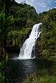 Kulaniapia Falls, Big Island, Hawaii.jpg